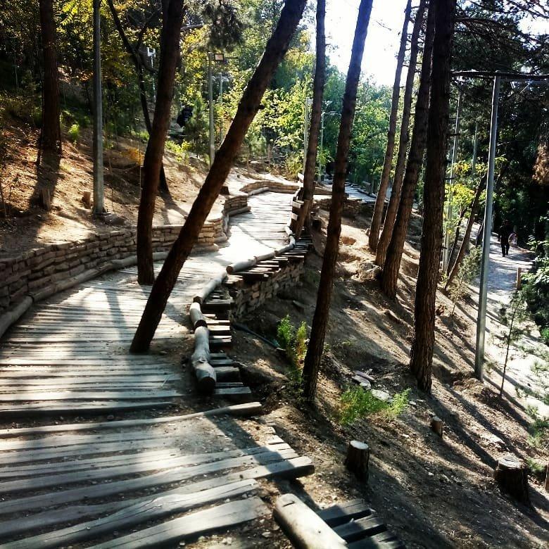 راه چوبی ورودی پل طبیعت تهران بزرگراه جهان کودک