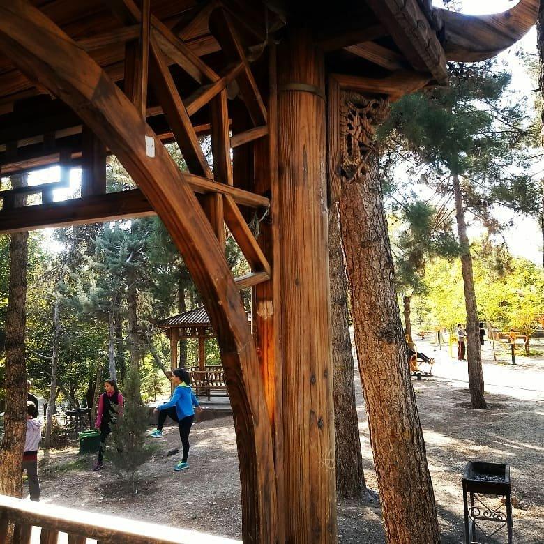 آلاچیق های سبک ژاپنی در پارک طالقانی