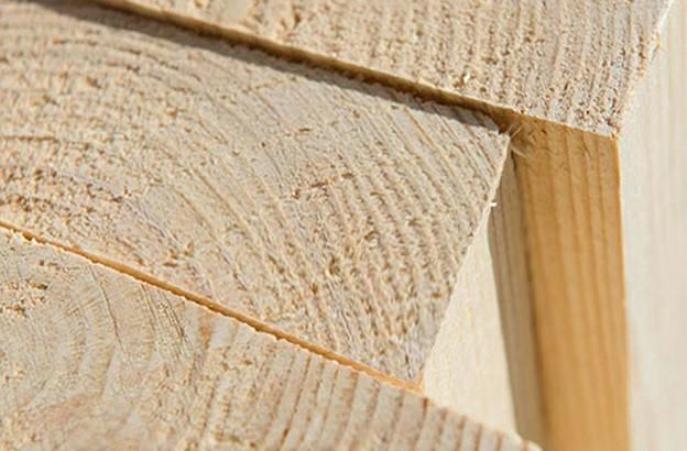 چوب کاج روسی , همه چیز درباره چوب روس