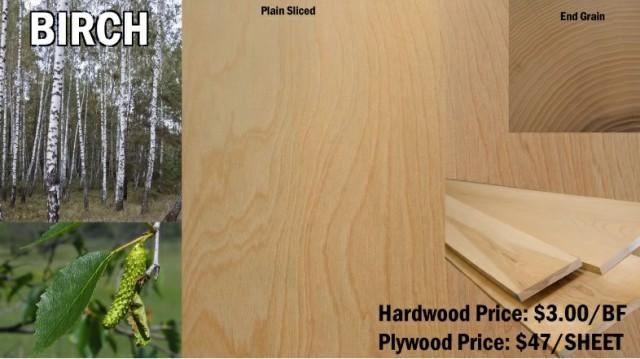 چوب صنوبر و معرفی انواع چوب