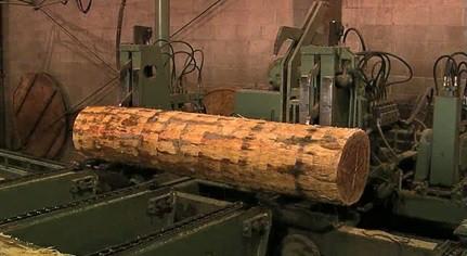 همه چیز راجع به روکش های چوبی که باید بدانیم -  چگونگی تولید روکش های چوبی