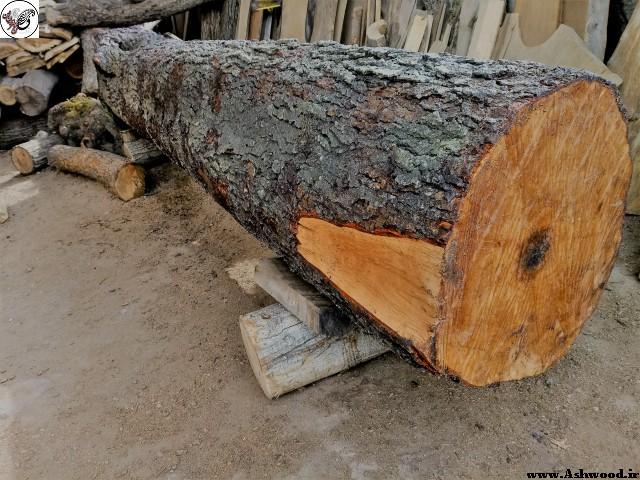 کنده درخت چوب توسکا , تخته جنگلی مناسب میز , اسلب چوب