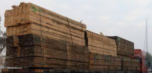 تخته کاج روسی بازار چوب خاوران