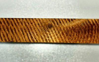 نمای چوب ترمووود بر روی درب ورودی و درب فلزی حیاط