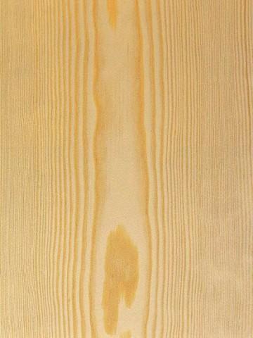 چوب کاج , مشخصات چوب درخت کاج , خواص چوب کاج , برش چوب کاج , فروش چوب کاج