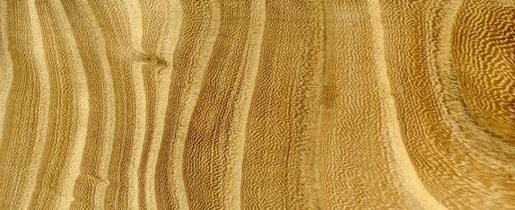 چوب ملچ , سختی چوب ملچ , مشخصات چوب نارون
