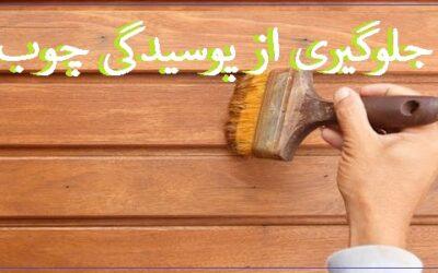 روش های جلوگیری از پوسیدگی چوب