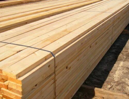 چوب کاج روسی نکاتی درباره درخت , چوب , قیمت و کیفیت چوب روسی