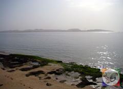 جزیره هنگام، ساحل جزیره هنگام، دریای جزیره هنگام. دلفین های جزیره هنگام