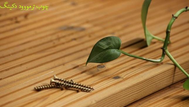 چوب ترمووود چیست؟ راهنمای نهایی ترمووود