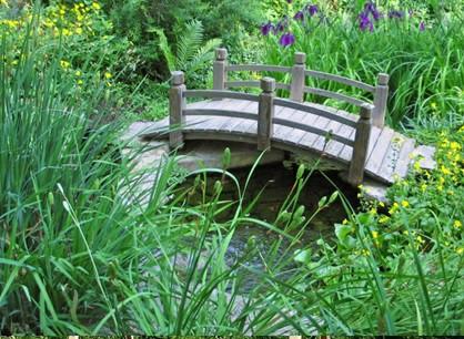 آشنایی با پل چوبی باغ , عکس پل چوبی
