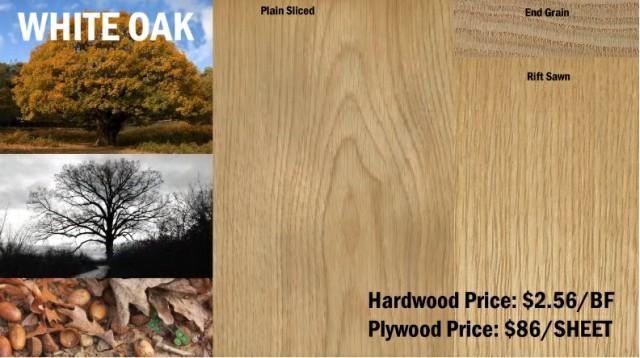 چوب بلوط سفید , معرفی انواع چوب