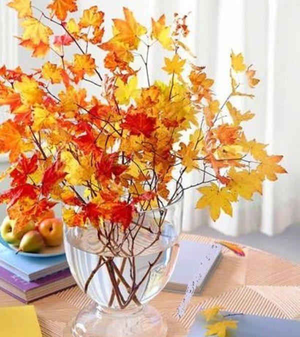 «پاییز» زیباترین فصل برای تغییر دکوراسیون منزل