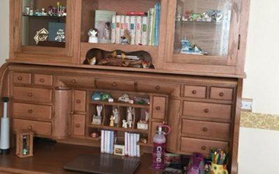 عکس دکوراسیون چوبی و کتابخانه چوب بلوط