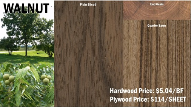 چوب گردو و معرفی انواع چوب