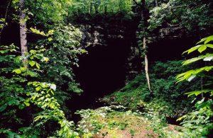 دهانه یک غار در آلاباما