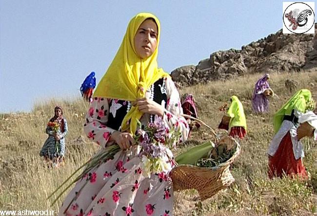 طایفه بختیاری ، ایرانی ، اقوام ایرانی
