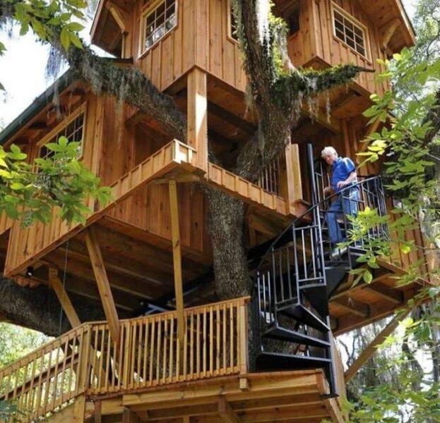 خانه چوبی روی درخت