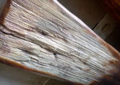 سندبلاست چوب چنار
