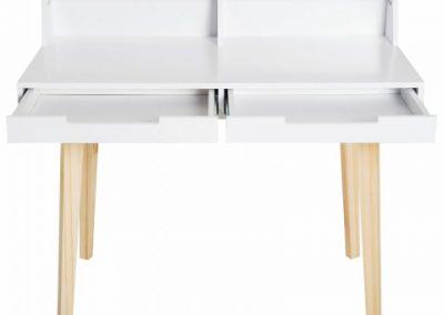 Desk Drawer (12)