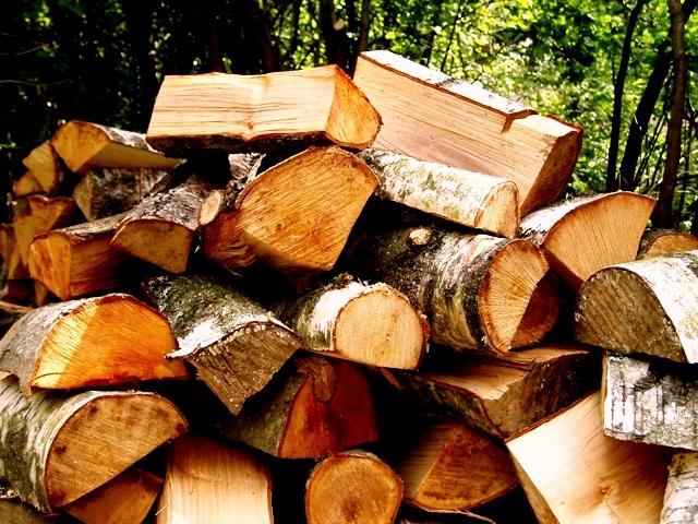 فراورده های چوبی ، چوب الوار تخته و تنه درخت گرده بینه