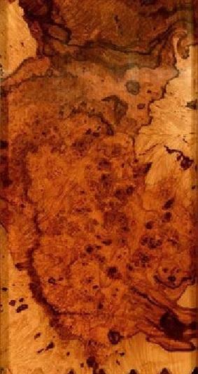 چوب ریشه کیکم اتشین