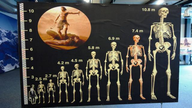 نفیلیم (Nephilim) عکس انسانهایی غول پیکر به نام نفیلیم (Nephilim)