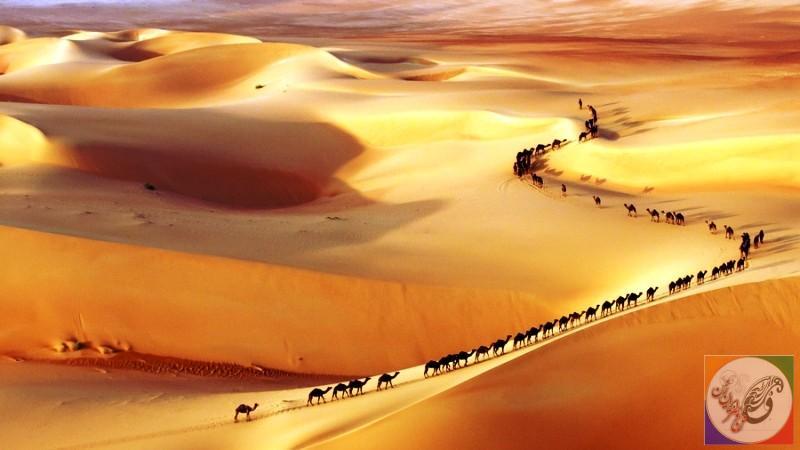 عکس بیابان قطار شتر عربستان