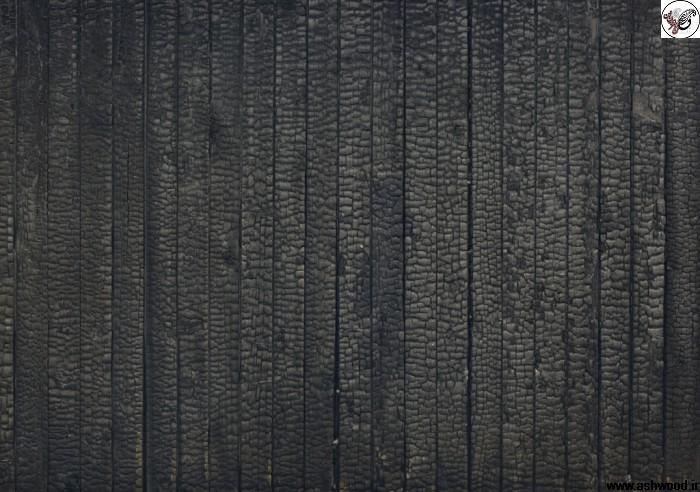 تصاویر جالب از تکسچر و متریال چوب و ساختمان