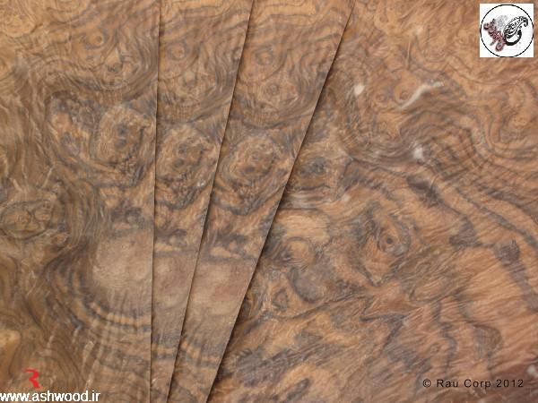 تخته و الوار و تنه درخت گردو , روکش و چوب گردو ، ریشه گردو , دکوراسیون چوب گردو