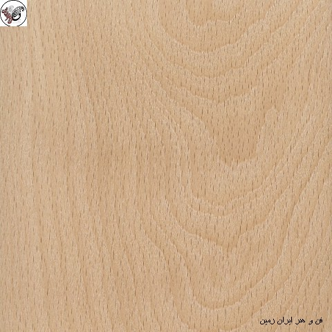 چوب راش ، فروش چوب و چوب روسی و چوب فروش , انواع و اقسام چوب و ویژگی آنها