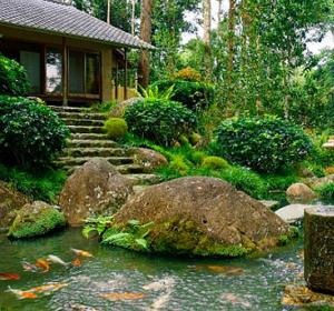 تزئین باغچه به سبک ژاپنی