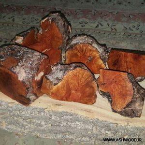 معرفی انواع چوب مناسب ساخت پیپ , چوب پیپ ,
