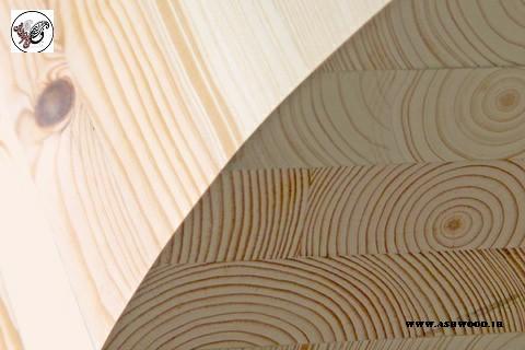 عوامل مهم تاثیر گذار بر روی قیمت چوب