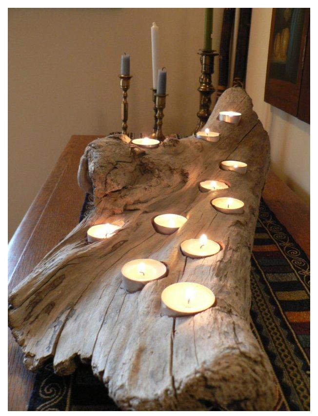 تنه درخت پوسیده و کهنه مناسب ایجاد قطعات دکوراتیو