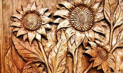 منبت گل آفتاب گردان