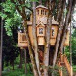 کلبه چوبی , چوب کاج , دکوراسیون چوبی فضای بار