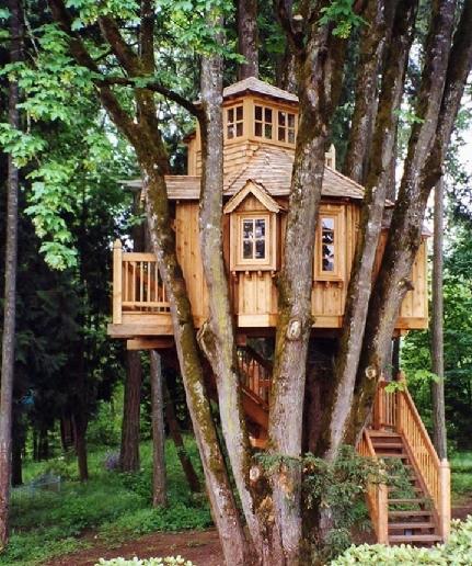 ایده های جالب آلاچیق و کلبه چوبی + عکس