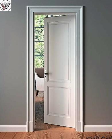 door (20)