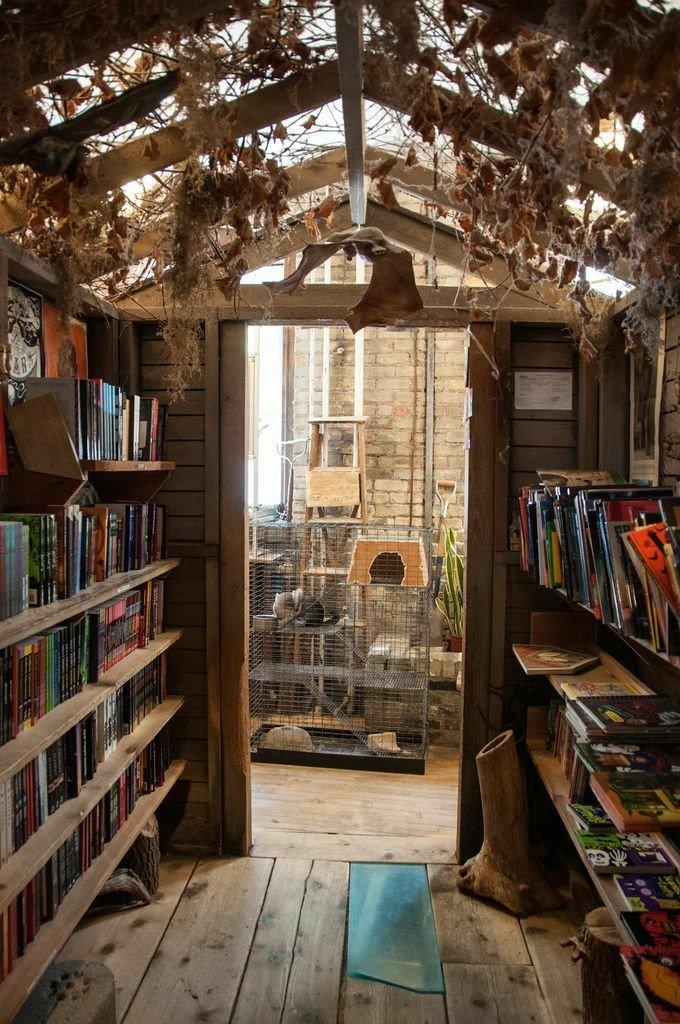 ایده و عکس کتابخانه چوبی کلاسیک و مدرن