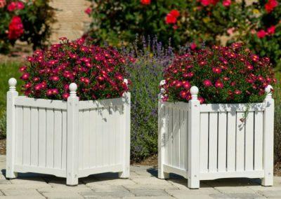 باکس گل , جعبه و گلدان چوبی گلدان چوبی , باکس گل چوبی , باکس گل رز ارزان فروش جعبه گل , باکس چوبی گلدان , قیمت باکس گل چوبی , باکس گل شیشه ای , باکس گل ارزان , باکس چوبی دیواری