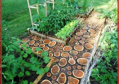 دکوراسیون چوبی
