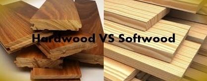 تفاوت چوب های نرم را با چوب های سخت