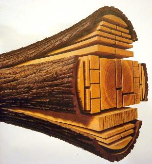چوب چهار تراش کاج روسی