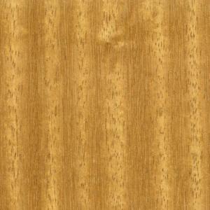 چوب ایروکو (به انگلیسی: Iroko) یک چوب درختی خیلی سخت