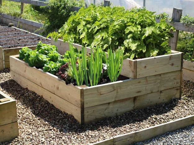 تخته های بنایی- نگهداری از گل ها و گیاهان با استفاده از تخته های بنایی استفاده شده