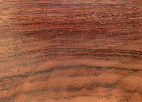 چوب سرخ درخت رزوود