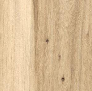 ظاهر چوب ملچ آمریکایی