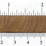 چوب ملچ بالدار