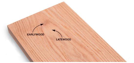 چوب تولید شده در یک سال دارای دو بخش متراکم و غیر متراکم است . بخش تیره متراکم است